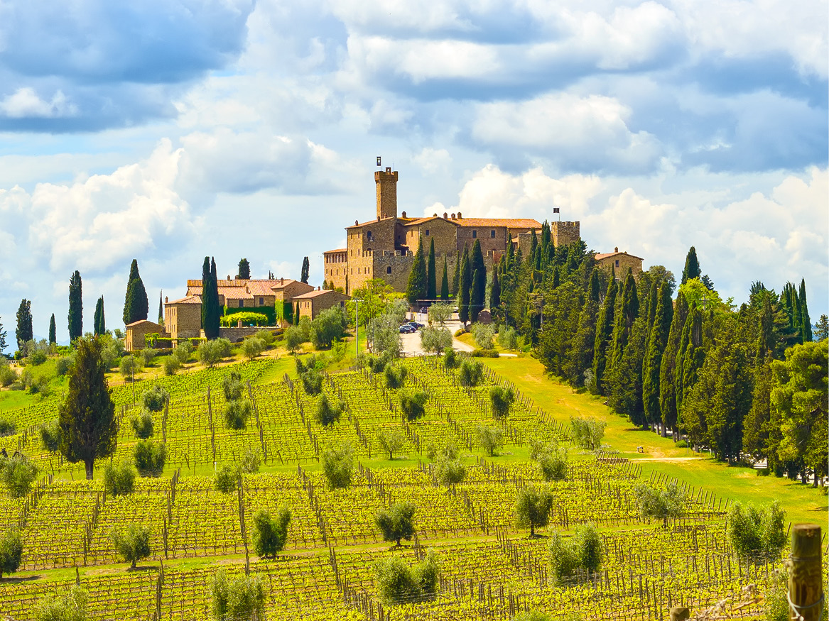 Italian Wines - Our Courses